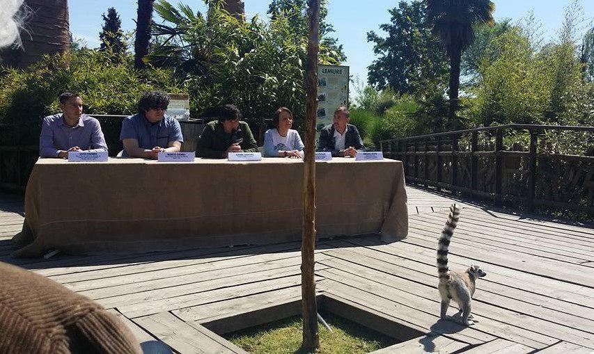Bioparco Zoom Torino - #conoscereperconservare - Conferenza Stampa con i Lemuri