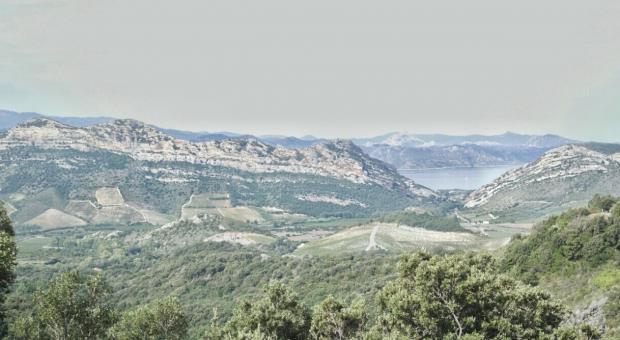Corsica, le colline di patrimonio Le Chemin des Vignobles
